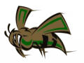 Mineral Springs Jr. Hornet Relays