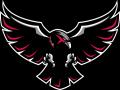 Blackhawk Relays
