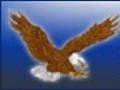 North Clayton Eagles Invitational