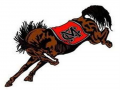 NEGIAA Region Championship CANCELED