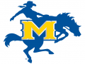 McNeese Indoor II (University)