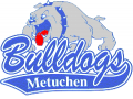 Metuchen Distance Night (Cancelled)