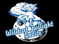 Wildcat Twilight Invite