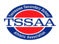 TSSAA Div. 1 Large Section 1 Championships