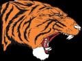 Hollister High School Track Meet