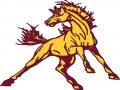 McNamara Mustangs Invitational