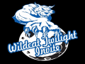 Wildcat Twilight
