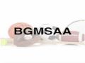 BGMSAA REGION MEET