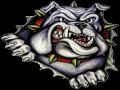Carl Junction Bulldog Invitational