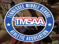 TMSAA Large  Sectional Championship