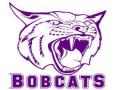 Berryville Bobcat Back 40