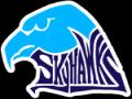 Skyhawk  Invitational