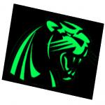 Panthers Elite