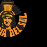 Corona del Sol High School