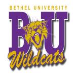Bethel University McKenzie, TN, USA