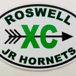 Roswell Jr Hornets