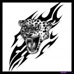 Memphis Jaguars Track Club