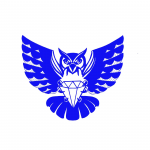 Ft Worth Young Women Leadership Academy