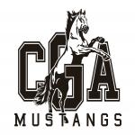 Central Georgia Arts & Athletics, Inc. Macon, GA, USA