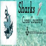 Anchor Sharks Apollo Beach, FL, USA