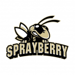 Sprayberry High School Marietta, GA, USA