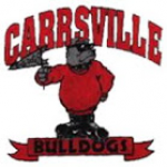 Carrollton Elementary School Carrollton, VA, USA